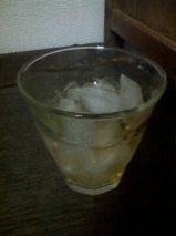 梅酒.jpg